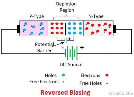 reverse-biasing-circuit