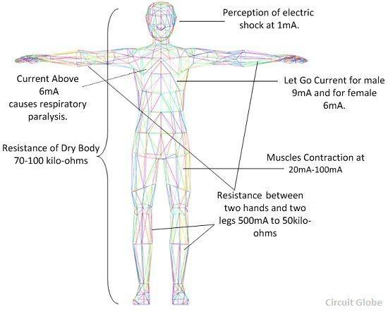 human-effect-on-human-body
